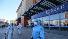 Experții OMS au ieșit din carantină. Începe ancheta despre originea noului coronavirus