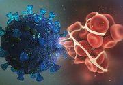 Vești proaste: 24 de cazuri noi cu noua tulpină din Marea Britanie a coronavirusului. Unde au fost cele mai multe