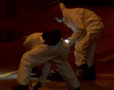 VIDEO   Atac salbatic, criminal în libertate