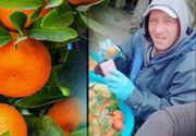 VIDEO - Fructele, spălate după recoltare cu detergent. Imagini postate de români pe internet