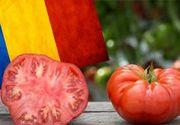 VIDEO - Tomatele românești, în piețe înainte de Paște. Promisiunea legumicultorilor
