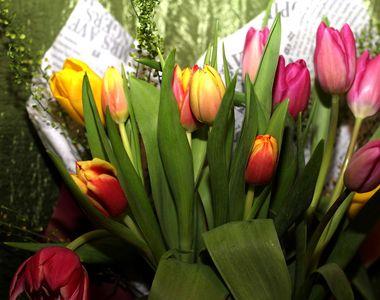 Mesaje de 8 martie. Urări și SMS-uri pentru mame, iubite și fiice. La mulți ani!