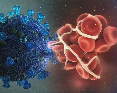 Studiu: Varianta britanică a coronavirusului este semnificativ mai periculoasă decât...