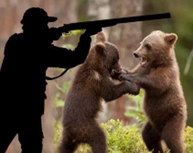 VIDEO - Soluția Guvernului pentru problema urșilor -să-i ucidă în masă