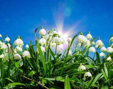 Prognoza meteo, azi 9 martie 2021. Cum va fi vremea în țară