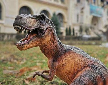 VIDEO - Interacțiune cu dinozaurii în curtea Muzeului de Geologie din București