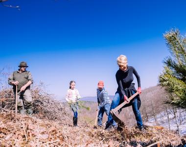 Ministrul Muncii, Raluca Turcan, a participat la o acțiune de împădurire în Sibiu