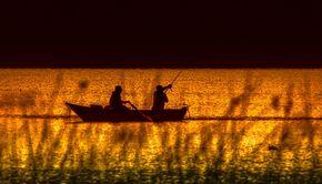 VIDEO | Interzis la pescuit în Deltă