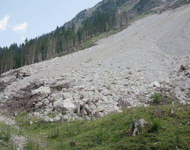 VIDEO - Pământul li se crapă sub picioare și terenul a luat-o la vale