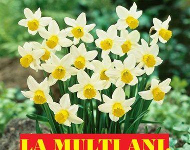 Mesaje de Florii 2021. Cele mai frumoase SMS-uri pentru cei cu nume de flori