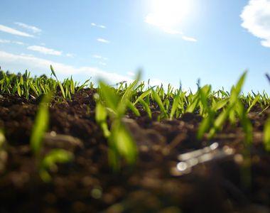 Prognoza meteo pentru joi, 21 aprilie 2021. O zi călduroasă și însorită de primăvară