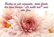 Cele mai frumoase mesaje de Florii 2021. Idei de felicitări și sms-uri pentru cei dragi