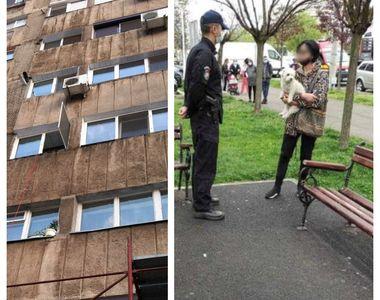 O femeie cu un căţel în braţe a ameninţat că se aruncă de pe un bloc cu 10 etaje....
