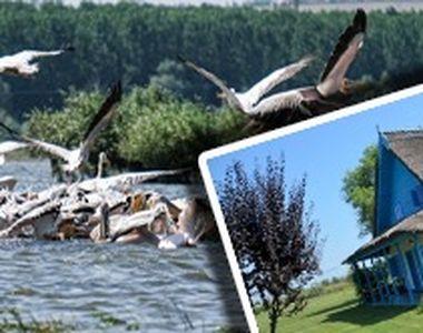 """VIDEO -Delta Dunării s-a dovedit a fi un """"refugiu"""" cu pensiunile pline"""