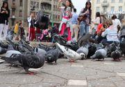 VIDEO - Timișoara a prins viață, după ridicarea restricțiilor din scenariul roșu
