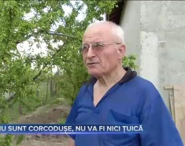 NU SUNT CORCODUȘE, NU VA FI NICI ȚUICĂ