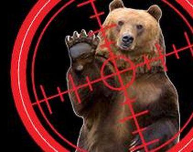 VIDEO - Împușcarea urșilor periculoși. Nu se știe ce exemplare pot fi ucise