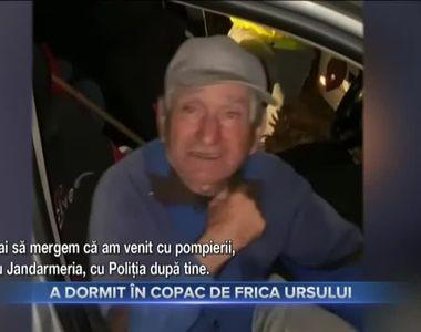 A DORMIT ÎN COPAC DE FRICA URSULUI