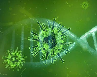 Bilanţ coronavirus, azi 20 iunie 2021: Câte cazuri noi s-au înregistrat în ultimele 24...