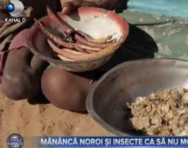 VIDEO| Copiii care se hrănesc cu plante și insecte ca să nu moară de foame