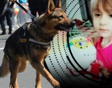 VIDEO | Căutări disperate pentru o copilă de cinci ani cu probleme de sănătate