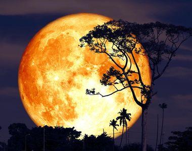 Luna Plină 24 iulie 2021: Zodiile care au parte de o iubire completă. Horoscop