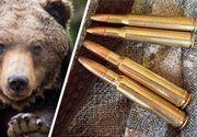 Ordonanță de urgență prin care se poate acționa împotriva urșilor agresivi