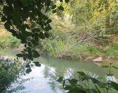 Incident șocant: Un copil de 8 ani, mama și bunicul acestuia au murit înecați în râul...
