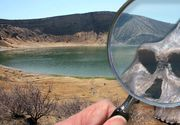Ce înseamnă Hominizi Turkana și care este misterul lui Homo erectus