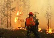 """Un alt incendiu de vegetație. Focul a izbucnit în Siberia: """"Nu ne amintim să fi existat vreodată o situație atât de gravă precum acum"""""""