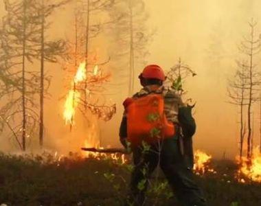 """Un alt incendiu de vegetație. Focul a izbucnit în Siberia: """"Nu ne amintim să fi existat..."""