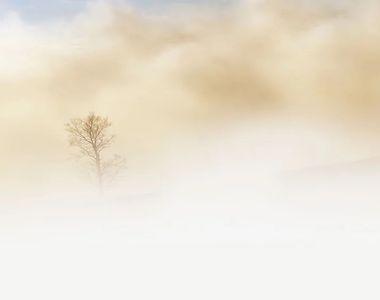 Atenție, șoferi! Ceață densă pe autostrada A2 Bucureşti-Constanţa. Vizibilitatea este...