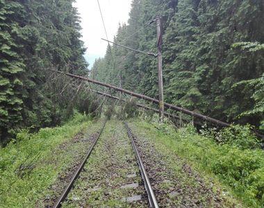 Copacii căzuți pe linia ferată au dus la întârzieri mari ale unor trenuri. Anunțul CFR