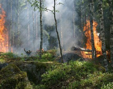 CNSU trimite către Macedonia de Nord, noi forțe pentru a ajuta la stingerea incendiilor...