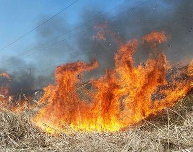 VIDEO | Incendiu mistuitor de vegetație în Mehedinți. Mai multe case, făcute scrum