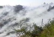 Incendiu în munții Căpățâii. Pompierii încearcă să stingă focul de 12 ore