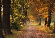 Vremea în România, în perioada 30 august-27 septembrie 2021. Din 5 septembrie se răcește în toată țara