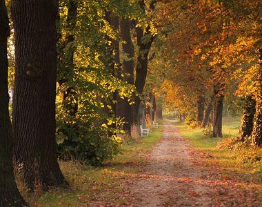 Vremea în România, în perioada 30 august-27 septembrie 2021. Din 5 septembrie se...