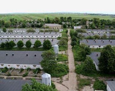 Moarte tragică: 2 bărbați din Suceava au murit după ce au căzut într-un canal cu...