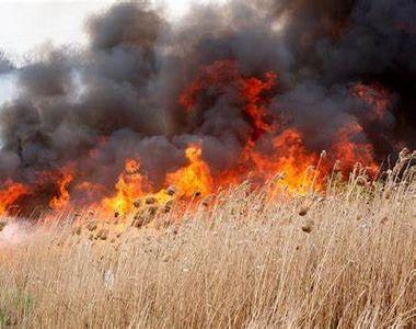 Un nou incendiu de vegetație la Hinova, în Mehedinți