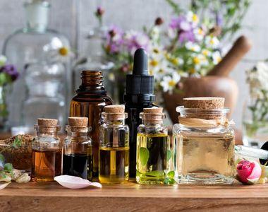 Citește detalii despre uleiurile esențiale de toamna și alte sfaturi utile
