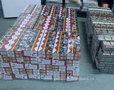 Contrabandă cu țigări. Acestea erau ascunse în stupi de albine
