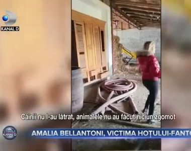 Amalia Bellantoni, victima hoțului-fantomă