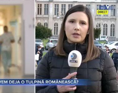 Ipoteza - Posibil sa avem deja o tulpina romaneasca