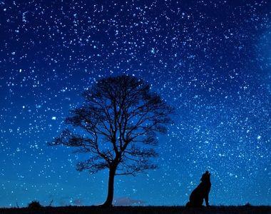 Lună Noua noiembrie 2021: Cum vor fi zodiile influenţate de acest aspect astronomic?