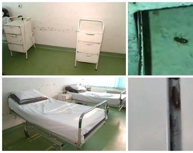 Spitalul județean din Slatina, plin de gândaci. Deși mizeria și imaginile filmate acolo...