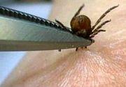 Invazia capuselor! Doar intr-un judet, doua persoane au fost diagnosticate deja cu boala Lyme, alte patru fiind suspecte