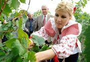 Elena Udrea a pierdut pariul cu agricultura! Firma fostului ministru, care se ocupa de cele 47 de hectare de teren arabil din Calarasi, a iesit pe minus cu 150.000 de euro
