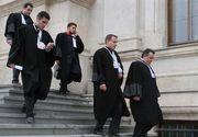 """Comisia Juridica a Camerei Deputatilor a adoptat legea care acorda """"superimunitate"""" avocatilor"""