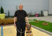 El este Jake, cainele politist din Arad care este scos la casat dupa 11 ani! Politia il vinde cu 200 de lei!